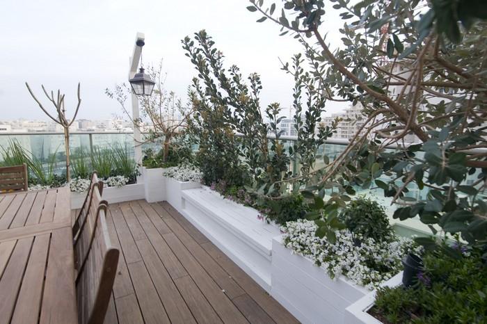 עיצוב גינות ומרפסות תל אביב