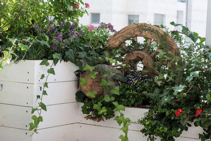 צמחייה בגינה על הגג