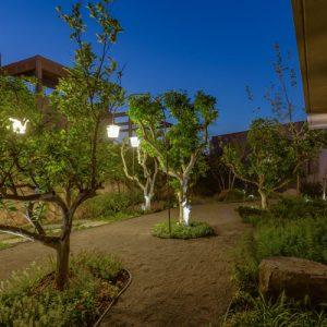 תכנון נוף בגינה פרטית