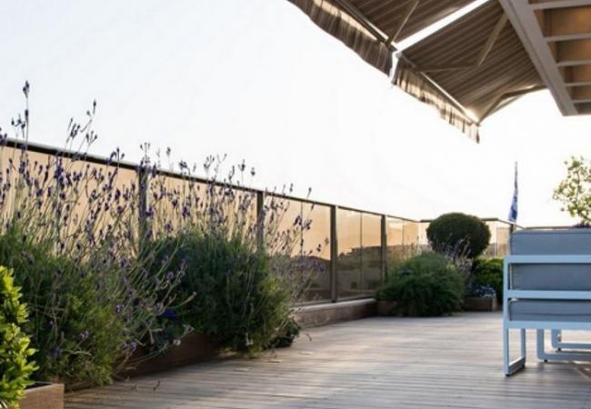 אדריכלות נוף בגינת גג