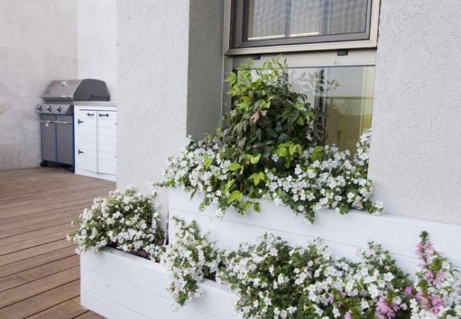 אדריכלות נוף במרפסת