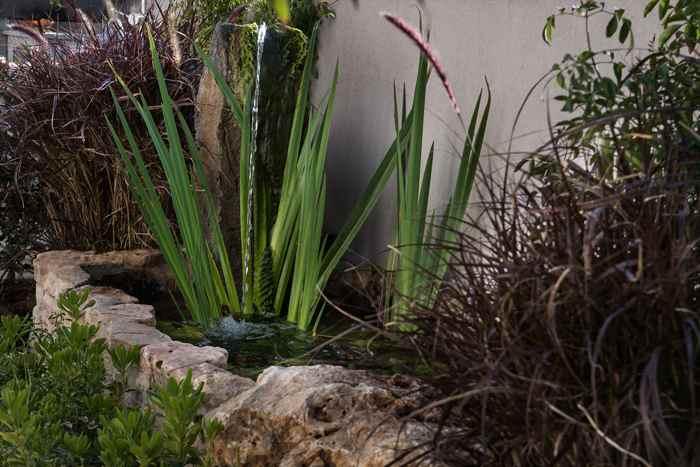 שילוב צמחיה באדריכלות נוף