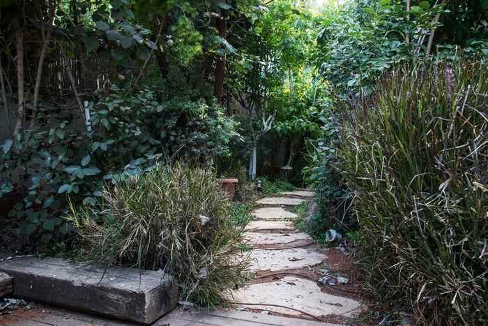 עיצוב צמחיה לגינה