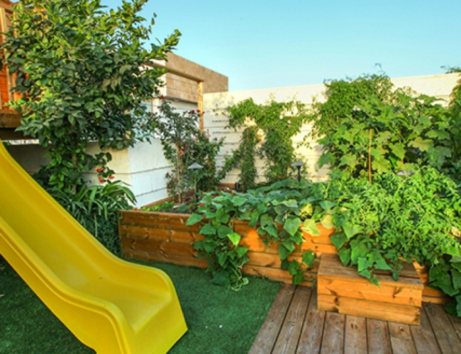 עיצוב גינות גג - פנטהאוז ברמת גן