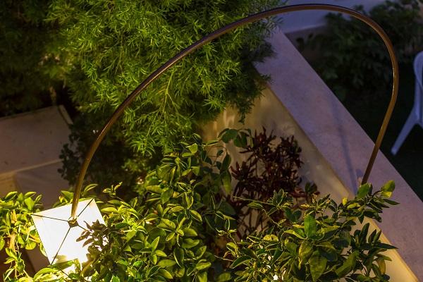 צמחייה ירוקה רב עונתית