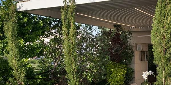 גינת גג של משפחת ראובני