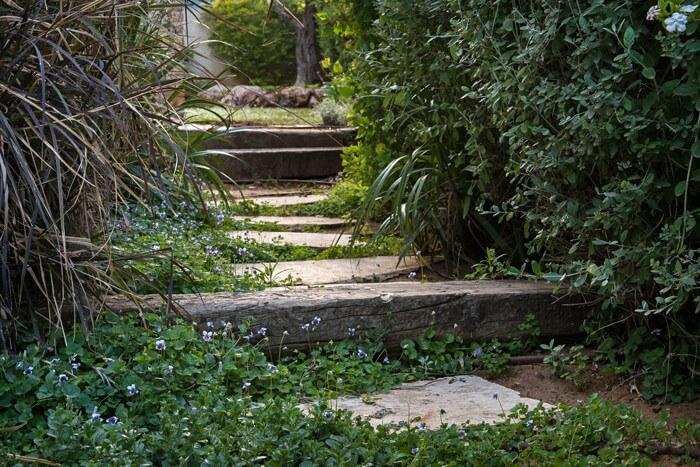 הגינה היפה של משפחת פסטר