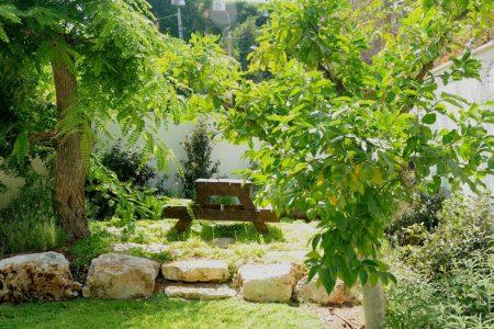 תכנון הגינה של נוגה