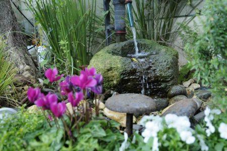 אדריכלות נוף לגינה של שרון