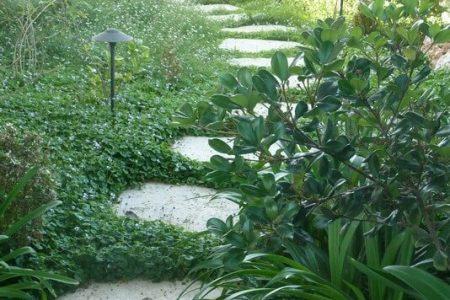 עיצוב הגינה של אורית ודניאל